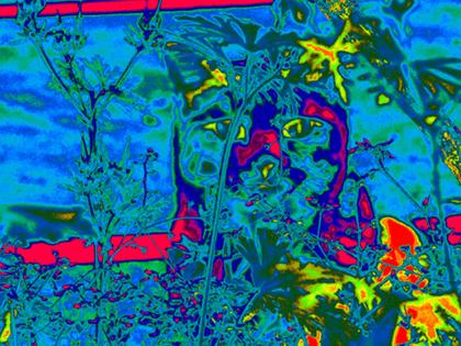 006-003透明(虹)からカラーカーブ.jpg