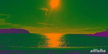 紫緑オレンジ.jpg